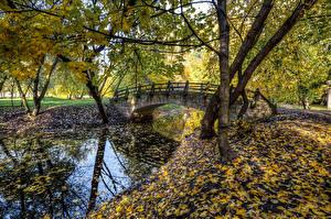 Bilder Russland Sankt Petersburg Park Fluss Brücken Herbst Blattwerk Bäume Park Ekaterinhof Natur