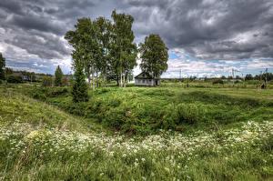 Fotos Russland Bäume Gras Wolke Star. Sloboda Leningrad Oblast