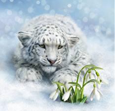 Bilder Schneeleopard Schneeglöckchen Gezeichnet Tiere