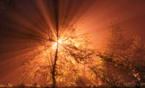 Fotos Morgendämmerung und Sonnenuntergang Himmel Lichtstrahl Natur