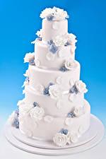 Hintergrundbilder Süßware Torte Rosen Farbigen hintergrund Design Lebensmittel
