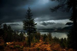 Photo Switzerland Mountains Lake Forests Evening Autumn Hilterfingen Canton of Berne Nature