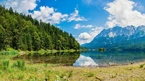 Fotos Schweiz Gebirge See Wälder Alpen Wasserauen Natur