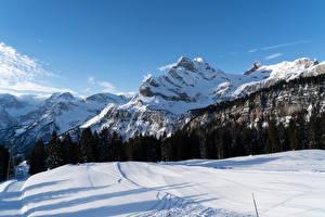 Hintergrundbilder Schweiz Gebirge Winter Wälder Alpen Schnee Braunwald Canton of Glarus Natur