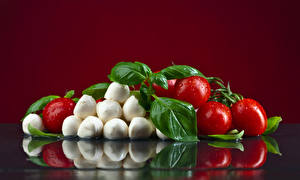 Picture Tomatoes Cheese Colored background Drops Leaf Food