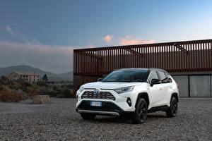 桌面壁纸,,丰田汽车,混合動力車輛,运动型多用途车,白色,金屬漆,2019 RAV4 Hybrid Style Worldwide,