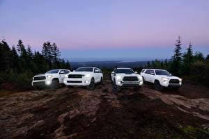 Hintergrundbilder Toyota SUV Weiß 4Runner, Tacoma, Tundra, Sequoia