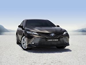 桌面壁纸,,丰田汽车,正面圖,黑色,混合動力車輛,Camry Hybrid 2019,