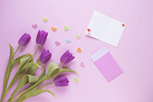 Wallpaper Tulips Colored background Template greeting card Violet Heart Flowers