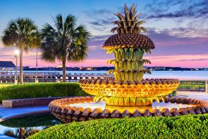 Bilder USA Springbrunnen Abend Design Palmen Charleston Pineapple Fountain Städte