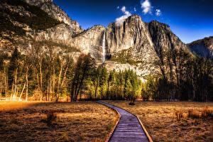 Photo USA Parks Mountains Autumn Landscape photography California Yosemite Trees HDR Nature