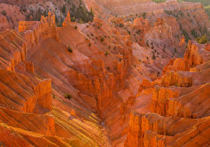 Photo USA Parks Mountains Cedar Breaks National Monument Nature