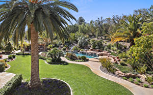Pictures USA Parks Pond California Palm trees Lawn Bush Trabuco Canyon Nature