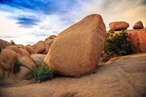 Hintergrundbilder Vereinigte Staaten Park Steine Kalifornien Joshua Tree National Park Natur