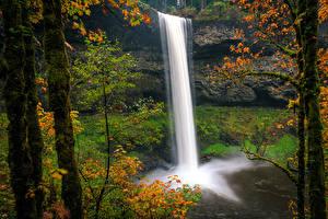 Fonds d'écran USA Parc Cascade Automne Falaise Le tronc Bryophyta Silver Falls State Park Oregon