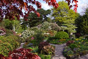Hintergrundbilder Vereinigtes Königreich Garten Strauch Bäume Lee Gardens Natur