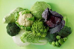 Hintergrundbilder Gemüse Kohl Brokkoli Farbigen hintergrund Lebensmittel