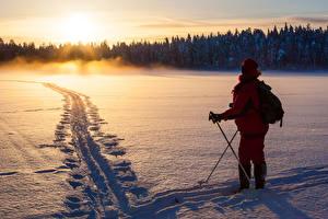 Bilder Winter Sonnenaufgänge und Sonnenuntergänge Wälder Skisport Schnee