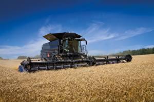 Bilder Landwirtschaftlichen Maschinen Acker Weizen Mähdrescher Massey Ferguson Ideal 9T