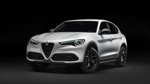 Hintergrundbilder Alfa Romeo Weiß Softroader Schwarzer Hintergrund Stelvio 2019 Stelvio Ti Autos