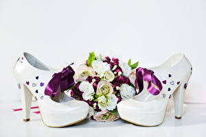 Photo Bouquets Roses White background High heels Bow