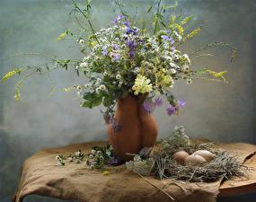 Bilder Kamillen Flockenblumen Löwenmäuler Vase Nest Eier Ast Blüte