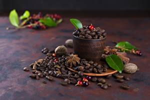 Photo Coffee Grain Cup Foliage Food