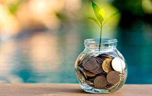 Wallpapers Coins Plants Jar
