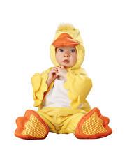 Fotos Entenvögel Weißer hintergrund Säugling Junge Uniform Kinder