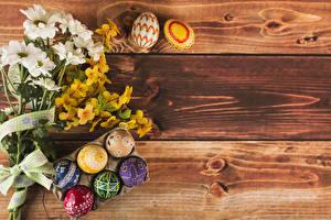 Bilder Ostern Sträuße Chrysanthemen Bretter Ei Blumen