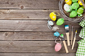 Images Easter Feathers Wood planks Eggs Paintbrush