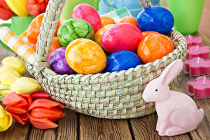 Wallpapers Easter Rabbits Tulips Eggs Wicker basket Multicolor