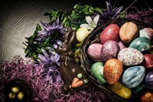 Fonds d'écran Pâques Confiseries Chocolat Lapin de garenne Œuf