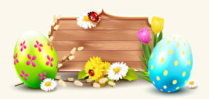 Fotos Ostern Tulpen Gänseblümchen Marienkäfer Weißer hintergrund Eier Vorlage Grußkarte