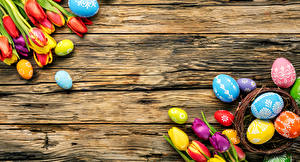Photo Easter Tulips Boards Eggs Multicolor Flowers