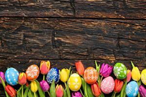 Wallpaper Easter Tulips Wood planks Eggs Multicolor Flowers
