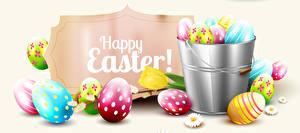 Bilder Ostern Weißer hintergrund Ei Englischer Eimer Design