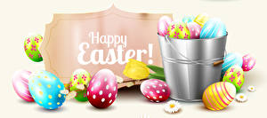Pictures Easter White background Eggs English Bucket Design