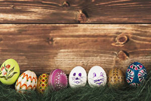 Wallpapers Easter Boards Egg Grass