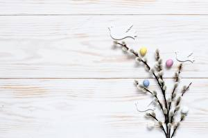 Image Easter Eggs Branches verba