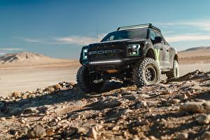 Bilder Ford SUV Raptor F-150 2017 Autos