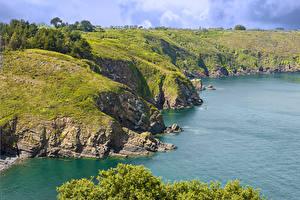 Fotos Frankreich Küste Bucht Felsen Laubmoose Plouezec Brittany