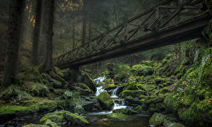 Wallpapers Germany Forests Stones Waterfalls Moss Stream Ravennaschlucht Nature