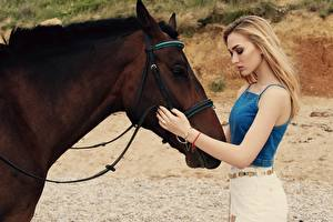 Pictures Horses Blonde girl Brown Hands Girls Animals
