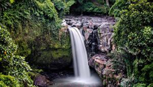 Hintergrundbilder Indonesien Wasserfall Felsen Laubmoose Tegenungan Waterfall Bali