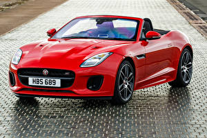 Fotos Jaguar Cabrio Rot Metallisch 2018-19 F-Type  Chequered Flag  Convertible