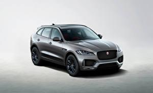 Desktop hintergrundbilder Jaguar Grau 2019 F-Pace Chequered Flag auto