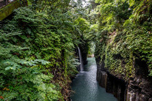 Picture Japan Rivers Waterfalls Rock Shrubs Takachiho Gorge Nature