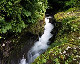 Bilder Japan Wasserfall Felsen Laubmoose Takachiho Gorge