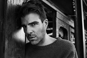 Image Men Black and white Face Glance Zachary Quinto Michael Schwartz Celebrities